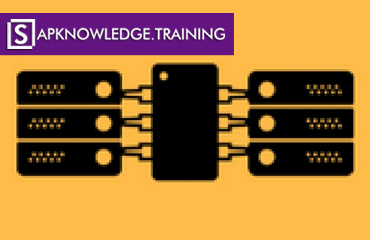 SAP IBP Online Training