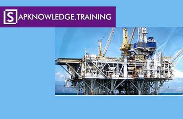 SAP OIL and GAS Online Training